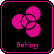 logo Belting